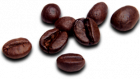 coffee-beans-png-files-26732